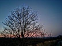 Crepúsculo em uma vila Imagens de Stock Royalty Free