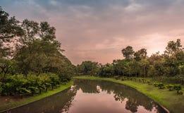 Crepúsculo en el jardín fotos de archivo libres de regalías