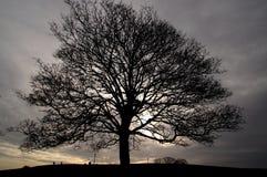 Crepúsculo I Imagen de archivo libre de regalías