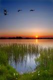 Crepúsculo pelo lago Fotos de Stock Royalty Free