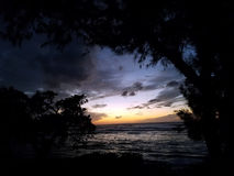 Crepúsculo sobre o oceano visto através das árvores Fotografia de Stock