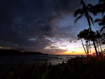 Crepúsculo sobre o oceano visto através das árvores Imagens de Stock
