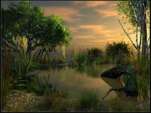 Crepúsculo sobre pântanos Fotos de Stock Royalty Free