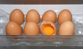 Crepa delle coperture dell'uovo in frigorifero Fotografie Stock