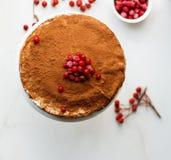 Crepe το κέικ με τη βουτύρου κρέμα και το κακάο και redcurrant σε ένα άσπρο υπόβαθρο, τοπ άποψη στοκ φωτογραφίες με δικαίωμα ελεύθερης χρήσης