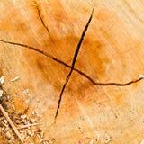 Crepe nel legno. Immagini Stock