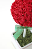 Crepe Paper Rose Topiary Royalty Free Stock Image