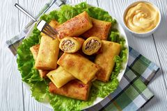 Crepe rolls with ground chicken meat, top view royalty free stock images