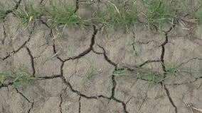Crepe in terra asciutta dovuto riscaldamento globale closeup video d archivio