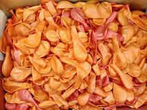 Crepes dulces rusas del queso con la crema agria para el desayuno o un bocado - it& x27; s delicioso Imagen de archivo