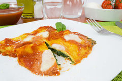 Crepes stuffed with spinach and mozzarella Royalty Free Stock Images