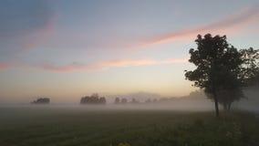 Crepúsculo da noite Imagem de Stock Royalty Free