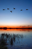 Crepuscolo dal lago Fotografia Stock