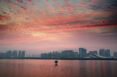 Crepuscolo del cigno del lago immagini stock