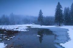 Crepuscolo nebbioso di inverno in alpi Immagini Stock Libere da Diritti