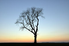 Crepuscolo Yorkshire Inghilterra fotografie stock libere da diritti