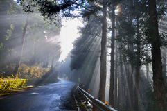 Crepuscular rays Royalty Free Stock Images