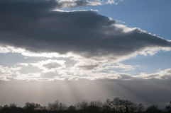 Crepuscular rays and treetops Royalty Free Stock Images