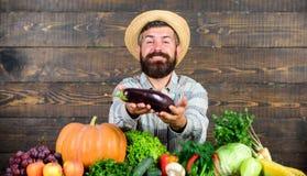 Cresça colheitas orgânicas Os adubos orgânicos fazem o solo e as plantas saudáveis e fortes Controlo de pragas orgânico Homem com fotos de stock royalty free