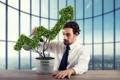 Crescendo a empresa da economia rendição 3d Fotografia de Stock Royalty Free