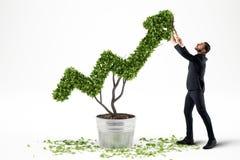 Crescendo a empresa da economia rendição 3d Foto de Stock Royalty Free