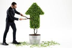 Crescendo a empresa da economia rendição 3d Imagem de Stock
