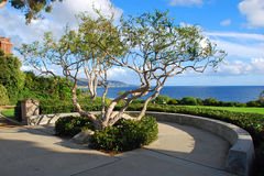 Crescent Bay Point Park, North Laguna Beach, California. Image shows part of the stunningly beautiful Crescent Bay Point Park which offers a spectacular view of royalty free stock images