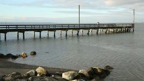 Crescent Beach Pier Dog Walking, A.C. almacen de metraje de vídeo