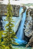 Crescent Falls in late spring. Crescent Falls Provincial Recreation Area. Alberta, Canada Royalty Free Stock Photo