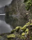 Crescent lake. Olympic rain forest drive on the west side of The Olympics Stock Images
