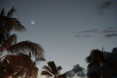 Crescent Moon i solnedgången Arkivfoto