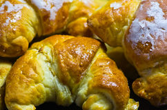 Crescent roll. Sweet Polish crescent roll background royalty free stock photos