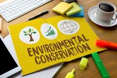 Crescimento ambiental P da proteção da preservação da vida da conservação Fotos de Stock Royalty Free
