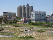 Crescimento da cidade: dos campos vegetais pequenos aos arranha-céus modernos fotografia de stock