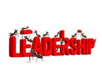 Crescimento da liderança do edifício ao lider do mercado Fotos de Stock Royalty Free