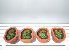 Crescimento da moeda Fotografia de Stock Royalty Free