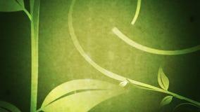 Crescimento das videiras & das folhas (Flourish do Grunge) ilustração do vetor