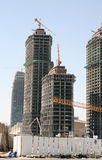 Crescimento de construção Fotografia de Stock Royalty Free