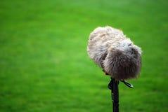 Crescimento de microfone imagens de stock royalty free