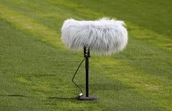 Crescimento de microfone do Close-up Imagem de Stock Royalty Free