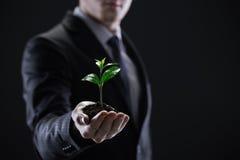 Crescimento do negócio Fotos de Stock