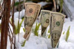 Crescimento financeiro da mola Fotografia de Stock Royalty Free