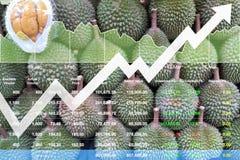 Crescimento financeiro econômico do índice de ações em frutos asiáticos Fotos de Stock Royalty Free