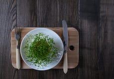 Crescione di giardino sul piatto bianco Alimento vegetariano Fotografie Stock