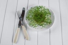 Crescione di giardino sul piatto bianco con la forcella ed il coltello Immagini Stock Libere da Diritti
