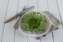 Crescione di giardino sul piatto bianco con la forcella ed il coltello Immagine Stock Libera da Diritti