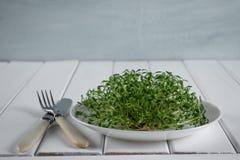 Crescione di giardino sul piatto bianco con la forcella ed il coltello Fotografie Stock