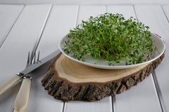 Crescione di giardino sul piatto bianco con la forcella ed il coltello Fotografia Stock