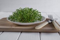 Crescione di giardino sul piatto bianco con la forcella ed il coltello Immagine Stock
