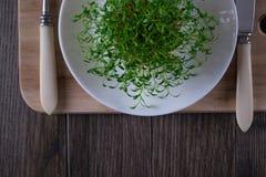 Crescione di giardino sul piatto bianco con la forcella ed il coltello Alimento vegetariano Immagine Stock